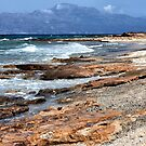 Rugged Shoreline of Chrissi Island by Kasia-D