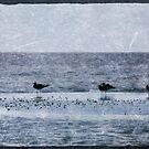 Blue Days by Jonicool
