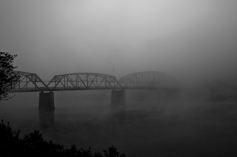 Into the Mist by TWright