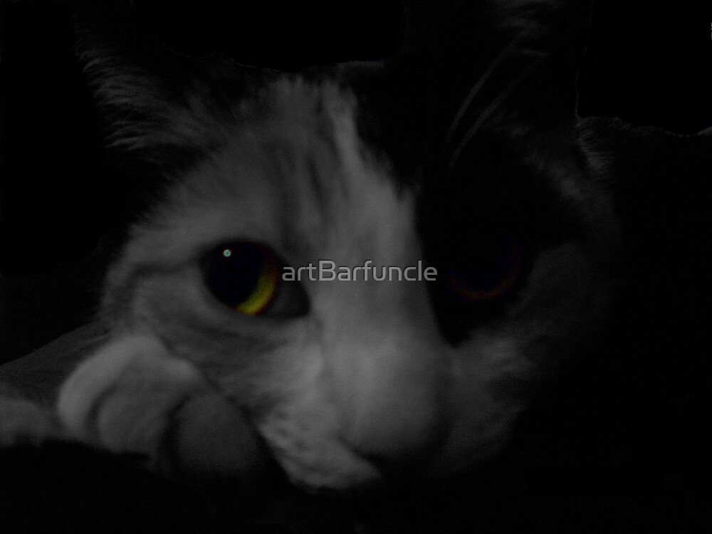Cats Eyes  by artBarfuncle