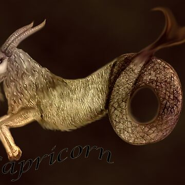 Capricorn by Jules11