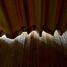 curtains by rob dobi