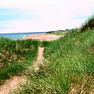 Sand dunes at Thunder Cove, PEI by Shulie1