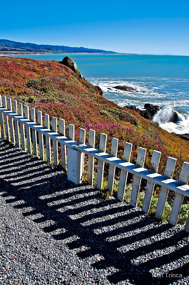 Pacific Coast  by Ron Trinca
