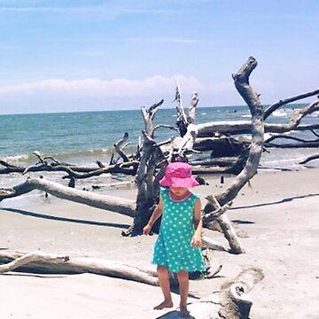 Beach Balancing Act by sethweaver