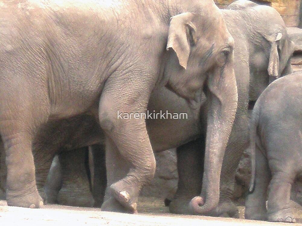 Elephants by karenkirkham