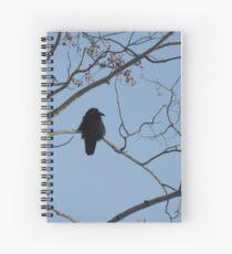 Fluffy Raven Spiral Notebook