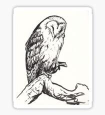 Sleeping Barn Owl Brush Pen Drawing Sticker