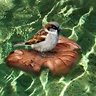 SparrowOnAQuest by RosaCobos