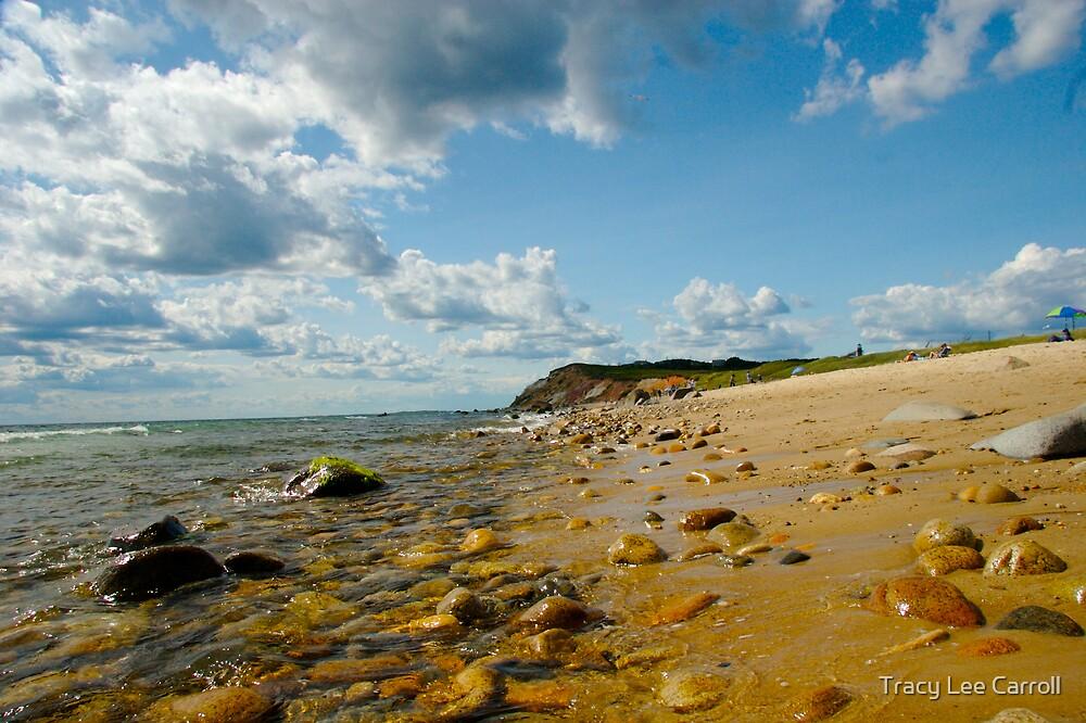 Moshup Beach by Tracy Lee Carroll