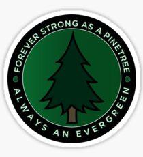 Evergreen // Knuckle Puck Sticker