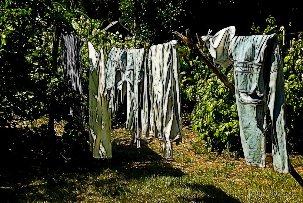 Out to Dry by Diane Blackford