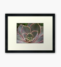 NATURE: .. WITHOUT A FLAW Framed Print