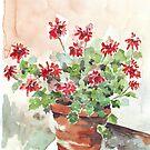 Sweet Geranium by Maree Clarkson