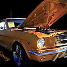 Mustang Power by Gene Praag