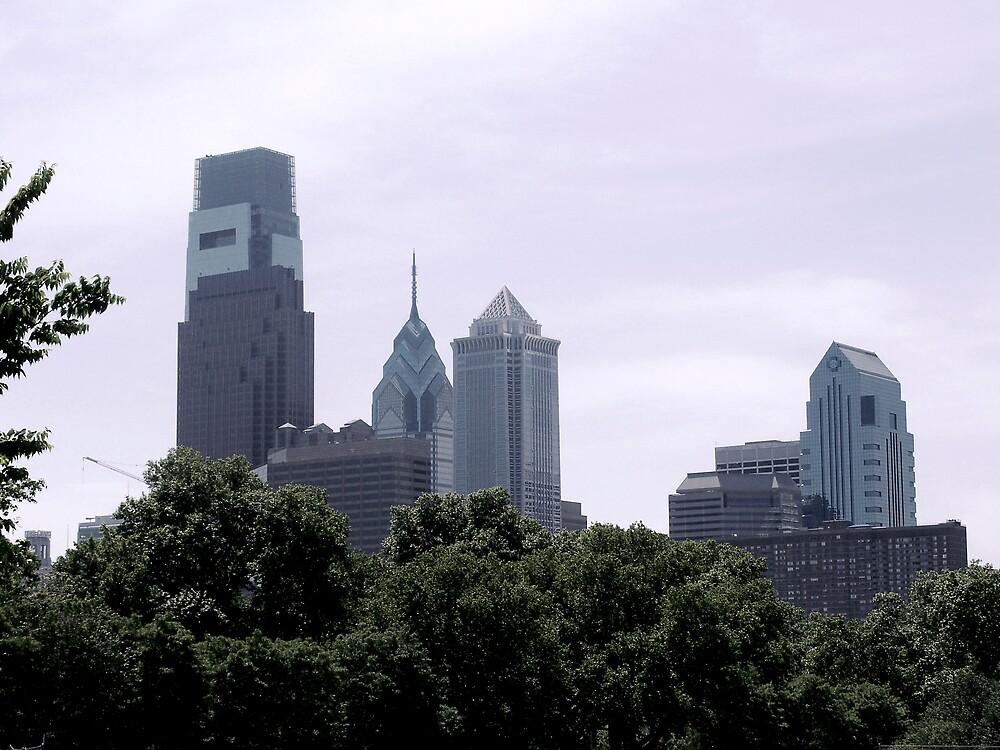 Philadelphia Skyline by Judi Taylor