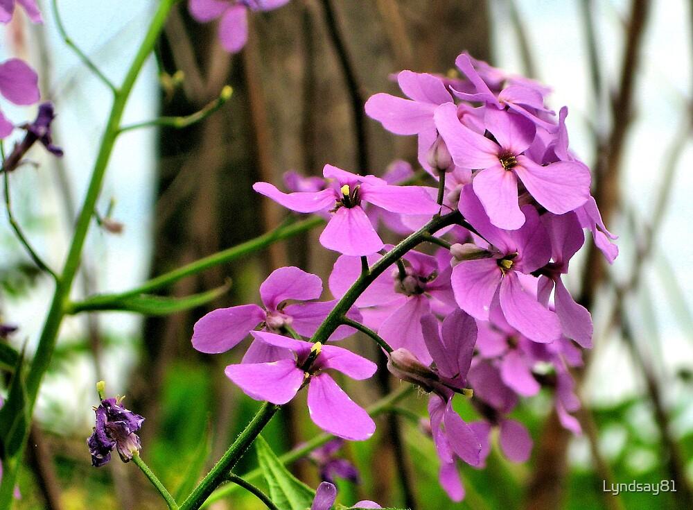Pretty In Purple  by Lyndsay81
