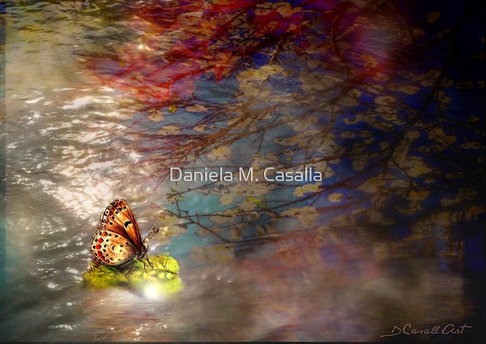 Reflejos by Daniela M. Casalla