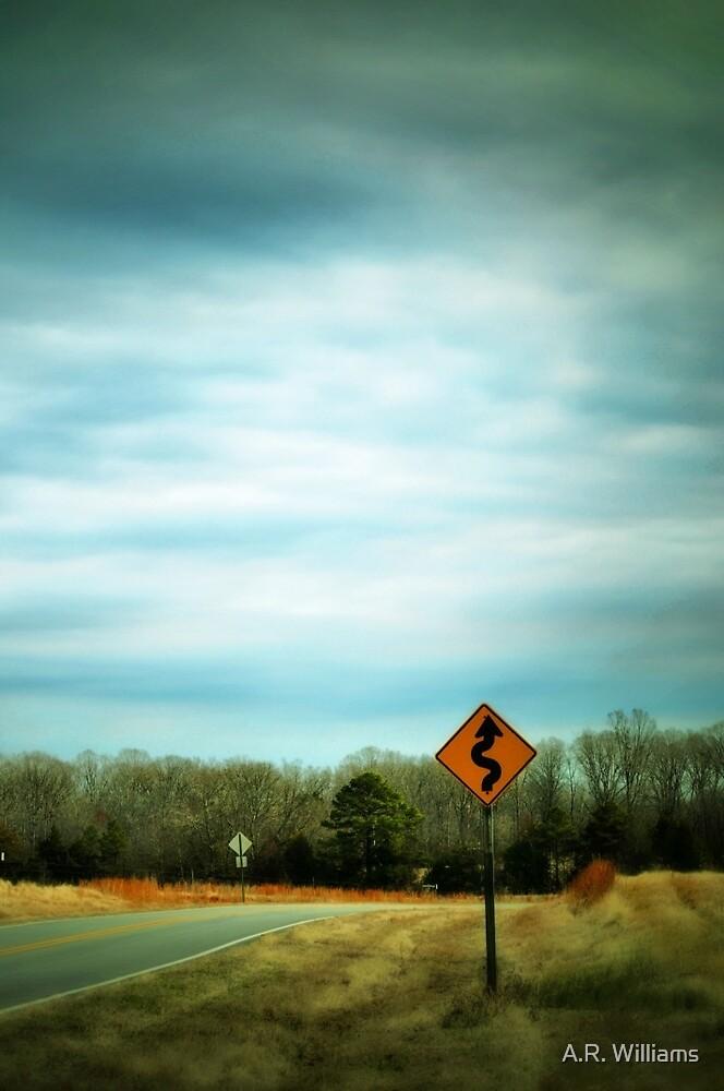 curves ahead by A.R. Williams