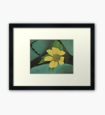 Nature's Yellow Sticky™ Framed Print