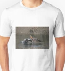 Brown Pelican Hunting In the Shallows T-Shirt