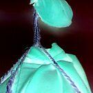 Shining Alien....... by scorpionscounty