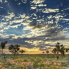 Sunrise over Martu Country by Kevin McGennan