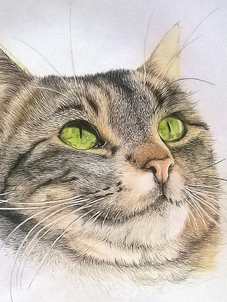 Cat's picture: Nino by Artanimalier