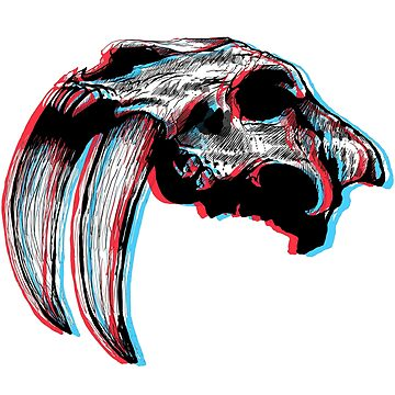 3D Saber Tooth Skull by kurovoid