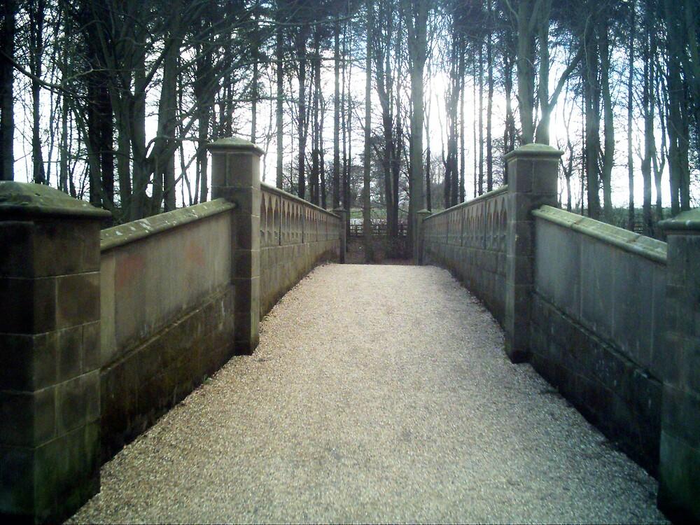 Bridge to no where by johnsmith123