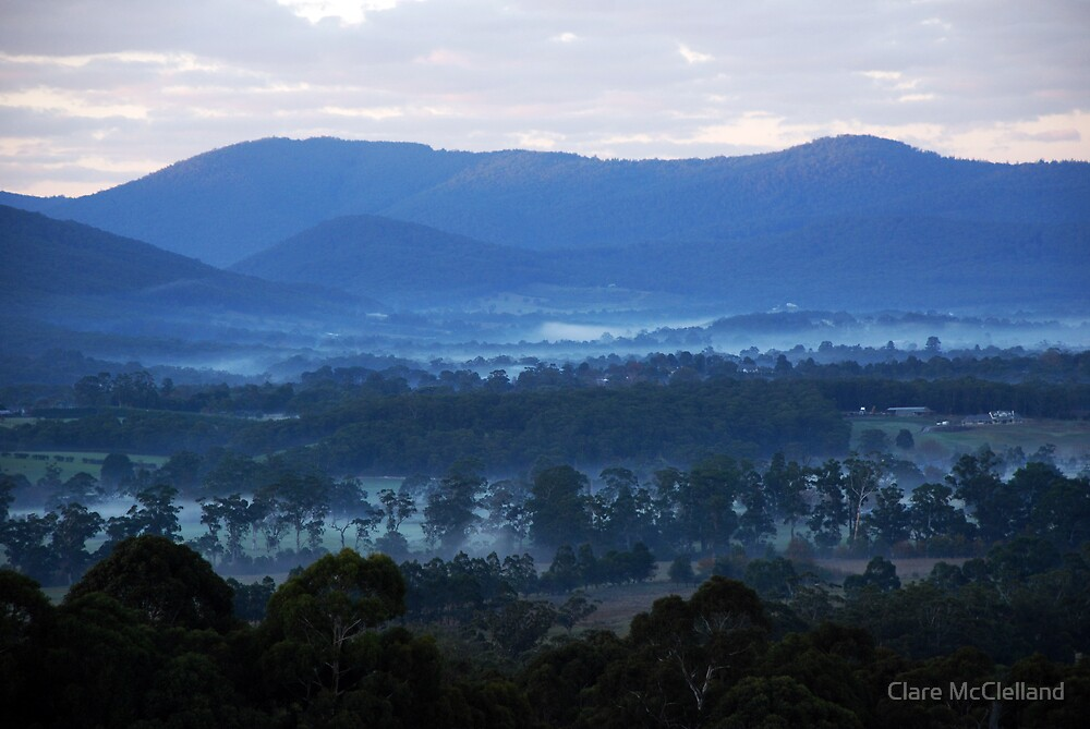 Misty Dawn in the Yarra Valley by Clare McClelland