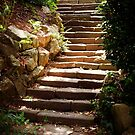 The Steps Beneath The Sun by Christine Lake