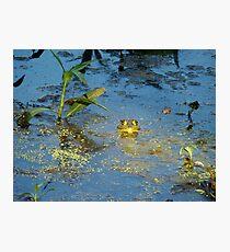 His Light Has Shone Upon Me Photographic Print