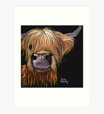 SCOTTISH HAIRY HIGHLAND COW 'HENRY' By Shirley MacArthur Art Print