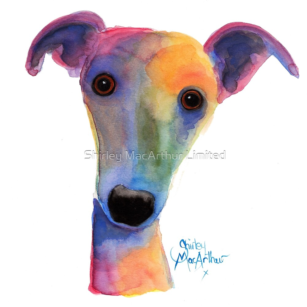 WHIPPET / GREYHOUND PRiNT 'PANSY' By Shirley MacArthur by Shirley MacArthur