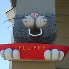 The hungry bird feeder by Lori Durocher