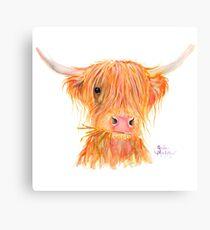 SCOTTISH HIGHLAND COW 'FERGUS' By Shirley MacArthur Canvas Print