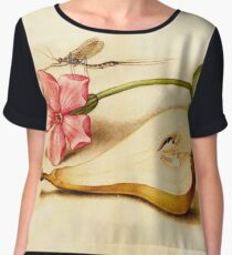 Vintage Mayfly Red Campion Pear manuscript parchment Women's Chiffon Top