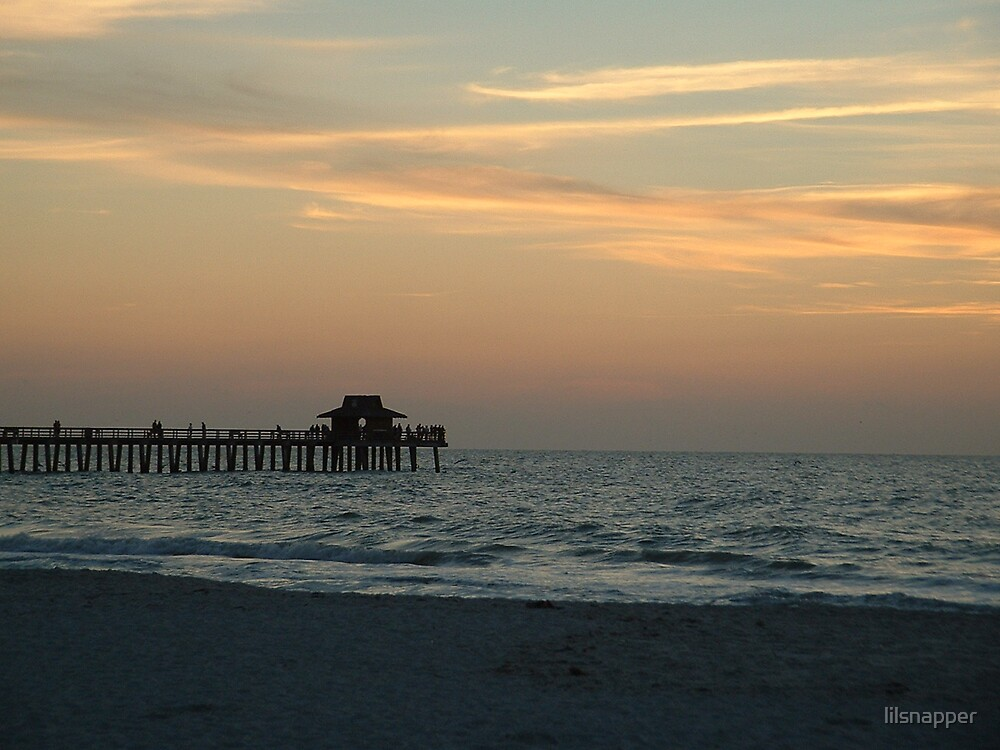 THE DOCK IN NAPLES FLORIDA by lilsnapper