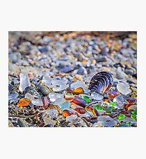 Life's Little Treasures Glass Beach Fort Bragg California Photographic Print
