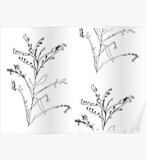 Continuous Line Floral Poster