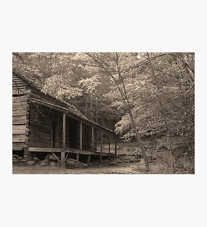 Ogle Place Photographic Print