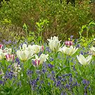 Bluebells and Tulips by Judi Lion