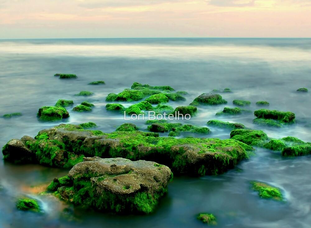 gems of the sea by Lori Botelho
