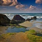 Oregon Beach by Yukondick