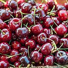 Fresh Farm Stand Cherries by Amy Mitchell