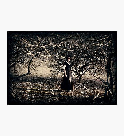 The Wooded Theatrette Photographic Print