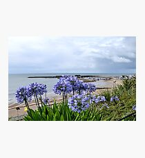 Lyme Regis .Dorset UK 2017-07-23 Photographic Print