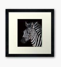 Earning Mi Stripes Framed Print
