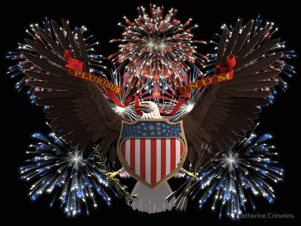 July 4 by Catherine Crimmins